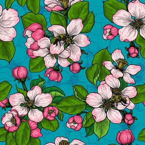 Apple blossom on turquoise