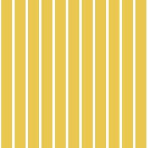 vertical hickory stripes on yellow medium