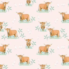 Happy Oxen