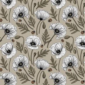 White poppies 3