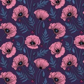 Pink poppies  on dark violet