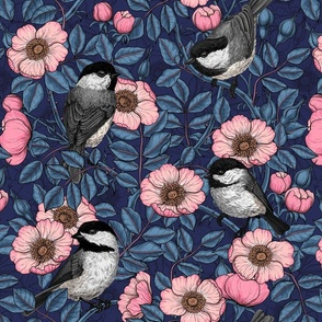 Chickadeed in the wild rose in pink and blue