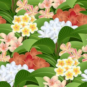 Tropical Hawaiian Plumeria Plants and Flowers // Rust, Terra Cotta, Peach, Green, Yellow, White