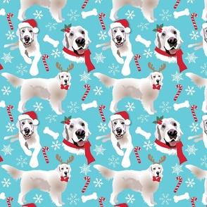 Baby Photos design