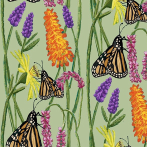 Monarchs Amid the Blooms - Sage