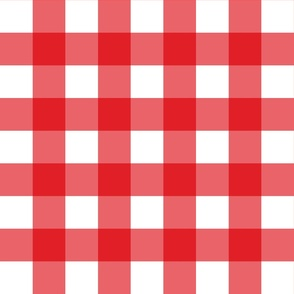 Red Gingham - Large (Rainbow Collection)