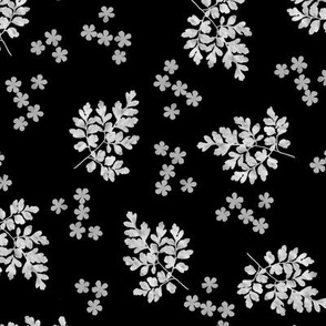 Corydalis and Flower Sunprints on Black