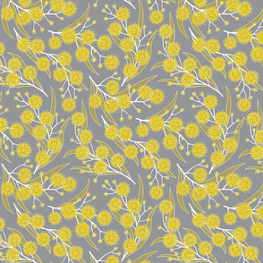 Golden wattle blossoms in yellow and gray - small scale