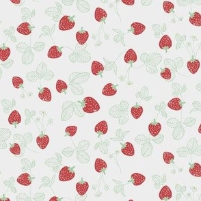 Strawberries_earth collection