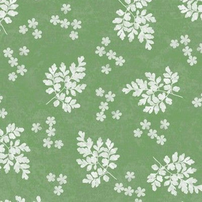 Corydalis and Flower Sunprints on Sage GreenTexture