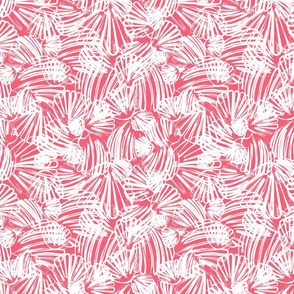 Coral Abstract Scallop