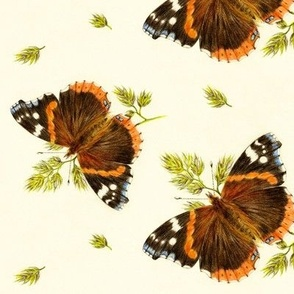 Admiral Butterfly Teatowel
