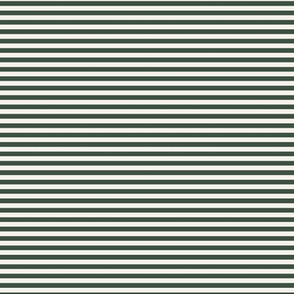 SMALL STRIPES IN FOREST