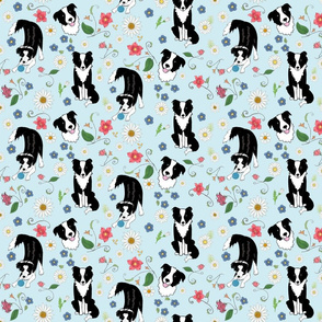 Border Collies vines and flowers on blue