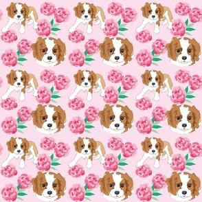 Cocker Spaniel Puppy pink peony