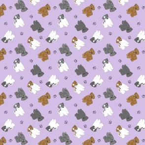 Tiny puppy cut Shih Tzus - purple