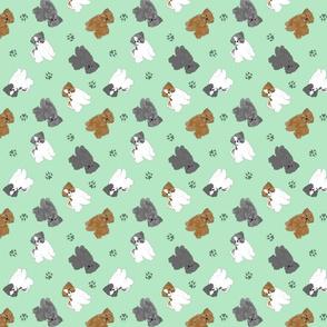 Tiny puppy cut Shih Tzus - green