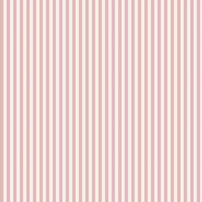 STRIPES IN ROSE