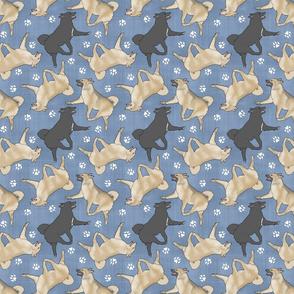 Trotting Norwegian Buhunds and paw prints - faux denim