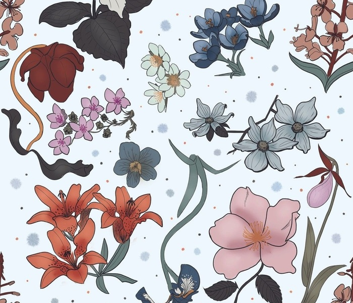 Floral Emblems of Canada