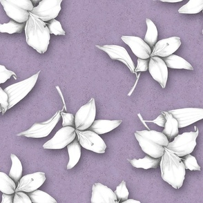 Lavender Lilies ©Julee Wood