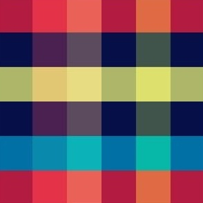 Rainbow Gingham
