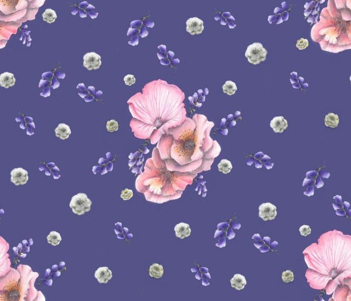 Flowers pink violet