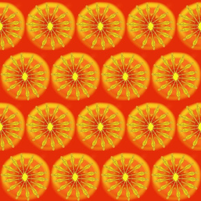 Sm Hope Dulcimer Sun on Red by DulciArt, LLC