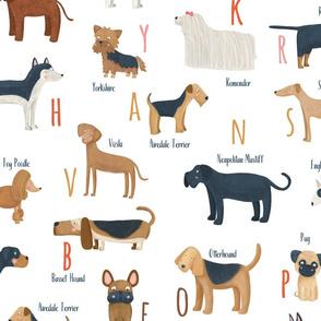 Dogs alphabet breeds Dalmatian Big scale