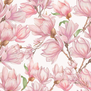 Pink Magnolia Flowers on Soft Pink