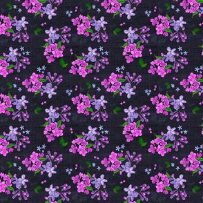 Pink, Orchid Lilacs Dark Background