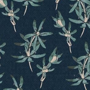 Mambray Creek Wildflowers - teale