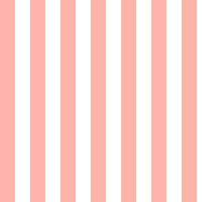 Light Coral Awning Stripe Pattern Vertical in White