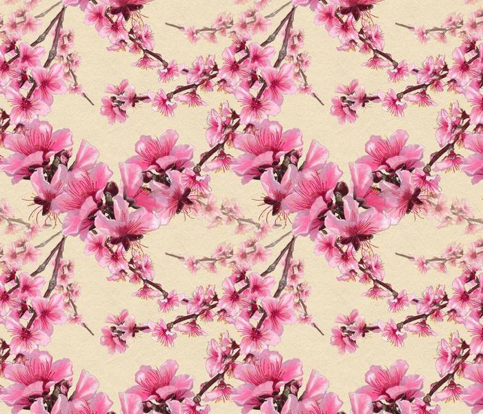 Peach blossoms on cream