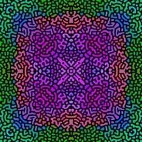 Fantasy Hydrangea