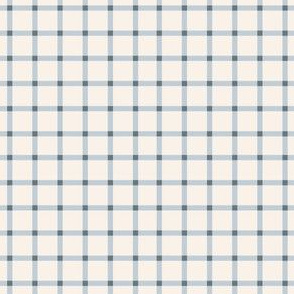 Gingham in Periwinkle-4.5x4.5