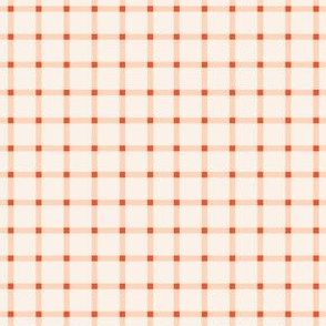 Gingham in Cherry Blush-4.5x4.5