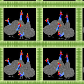 guinea_hen_4 squares
