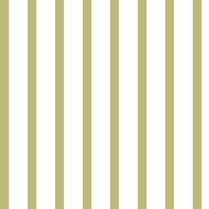 july stripes 02 olive only