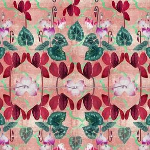 Cyclamen floral