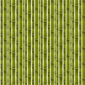 Indoor Bamboo Garden - Small Scale