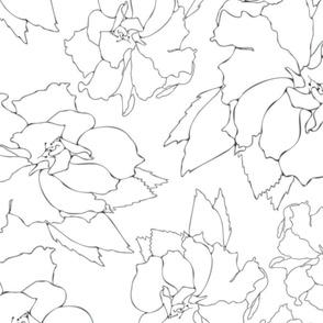 White Hibiscus Floral Tea Pattern