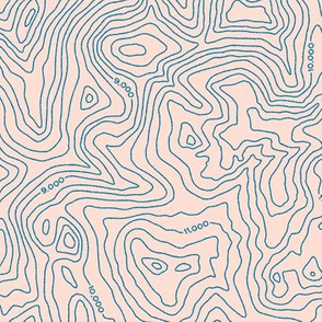 Topographic Map [Pink]