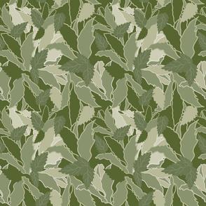 Green Mint Tea Leaf Pattern