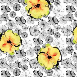 Yellow Blossoms on white background