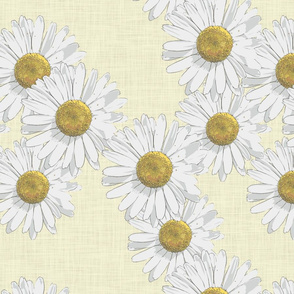 lazy daisies