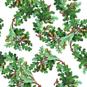 Vintage oak leaves print (large)