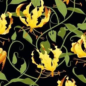 gloriosa vines on black