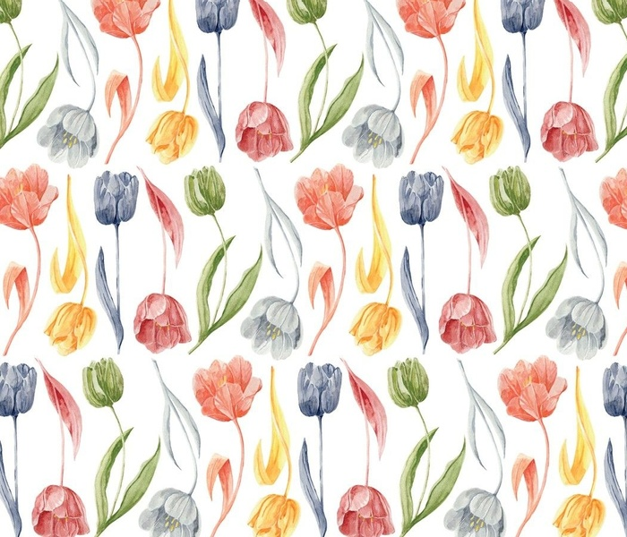 Hand-drawn Dutch Tulips