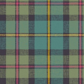 """MacLeod of Harris / green MacLeod / MacLeod hunting tartan, 6"""" faded muted with slubs"""